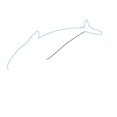 delfin malen schritt für schritt