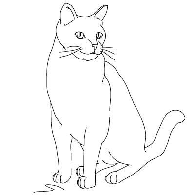 Katze Zeichnen Lernen Schritt Fur Schritt Tutorial Zeichnen Leicht