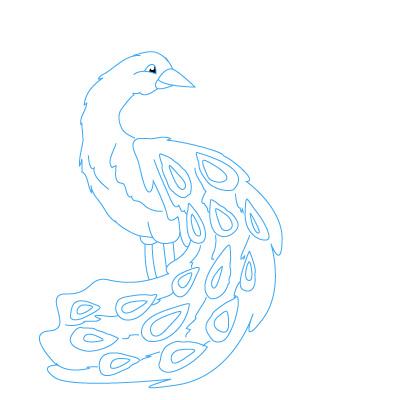 Pfau Zeichnen Lernen Schritt Für Schritt Tutorial Zeichnen Leicht