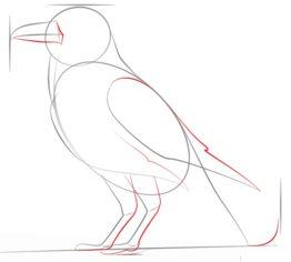rabe zeichnen lernen schritt f r schritt tutorial zeichnen leicht gemacht. Black Bedroom Furniture Sets. Home Design Ideas