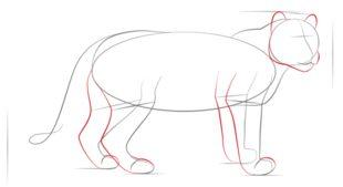 leopard zeichnen lernen schritt f r schritt tutorial zeichnen leicht gemacht. Black Bedroom Furniture Sets. Home Design Ideas