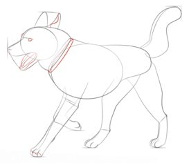 hund husky zeichnen lernen schritt f r schritt tutorial zeichnen leicht gemacht. Black Bedroom Furniture Sets. Home Design Ideas