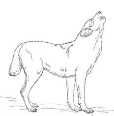 Wolf 2 zeichnen lernen schritt f r schritt tutorial for Disegni di lupi facili