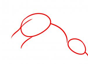 Drache Zeichnen Lernen Schritt Für Schritt Tutorial Zeichnen
